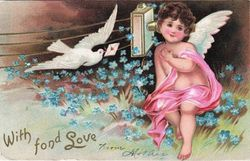 Dove with message of love