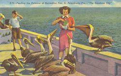 PelicanPier