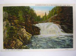 River Michigan postcard
