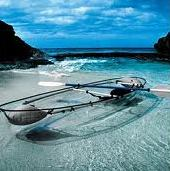 Glass-Bottom Boat