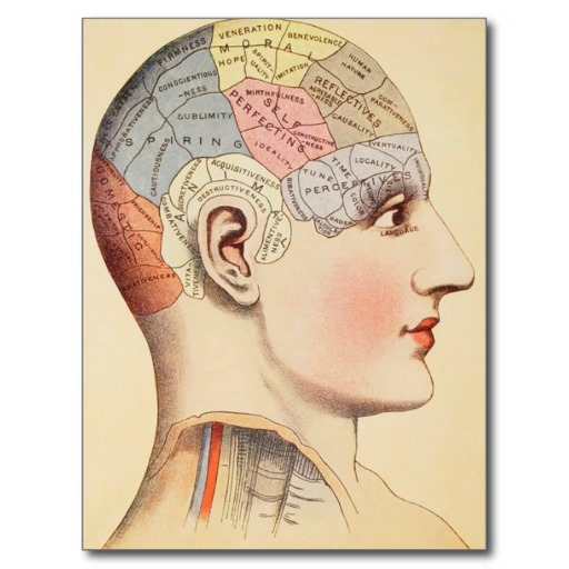 Three Mounds Of Knowledge - Phrenology
