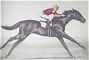 Jockey spurs on his horse to great speed