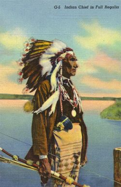 Indian Chief in Full Regalia