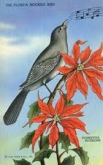 Mockingbird of Spring