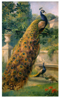 Hermansen-olaf-august-peacocks-in-the-park-1886